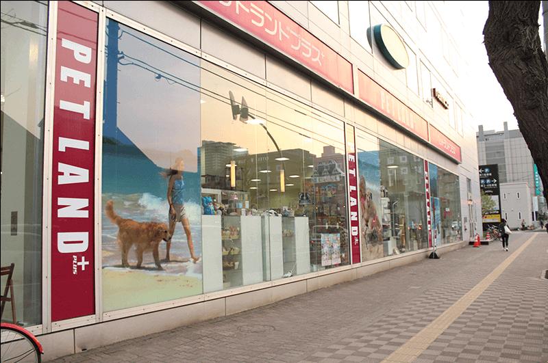 ファクトリー ショップ 札幌 ペット 札幌中央区のペットショップ(犬・猫販売)を紹介!札幌駅や大通は?